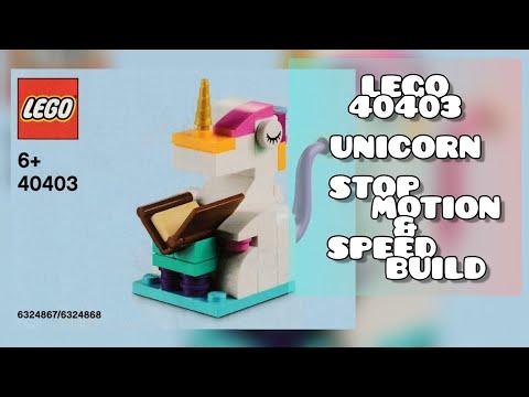 Vidéo LEGO Objets divers 40403 : La journée de l'alphabétisation
