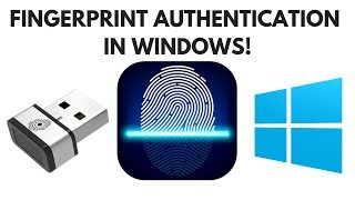 Fingerprint authentication in Windows using a USB FP reader dongle | English Version