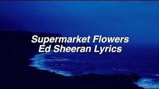 Supermarket Flowers || Ed Sheeran Lyrics