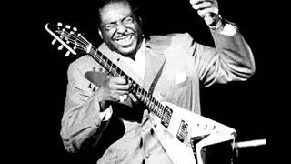 Albert King - The Hunter