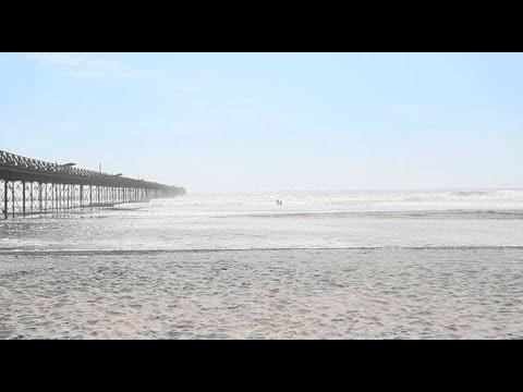 Playas de Pimentel en alerta por picaduras de 'tapaderas'
