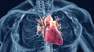Смотреть онлайн Как определить инфаркт и что делать до приезда скорой