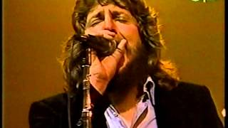 If You Think You're Hurting Me - The Marshall Tucker Band