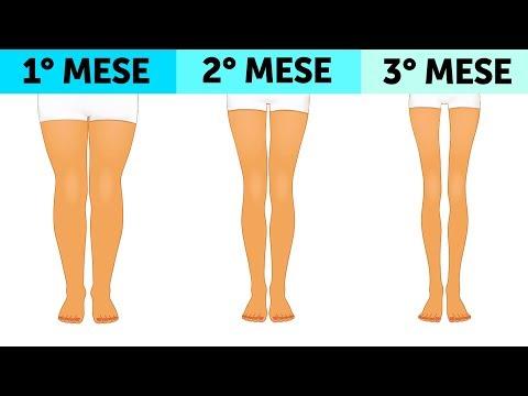 Endomorfo di perdita di grasso