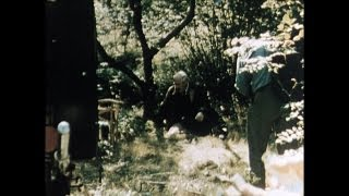 Trailer of Wild Strawberries (1957)