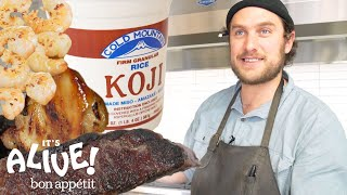 Brad Uses Moldy Rice (Koji) to Make Food Delicious | It's Alive | Bon Appétit - dooclip.me