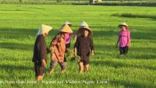 Hò Khoan Lệ Thủy- Đối đáp Giao Duyên ( Bảo Tồn HK ) - Liên