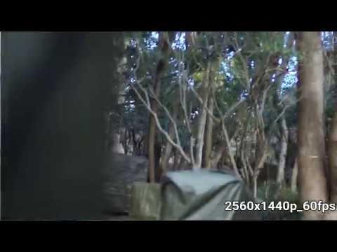 ---gitup-f1-1440p60fps-