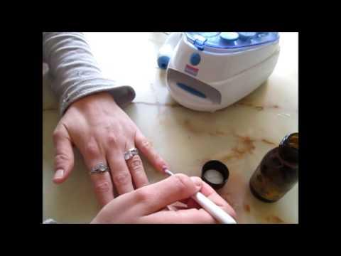 Les moyens du microorganisme végétal le candida