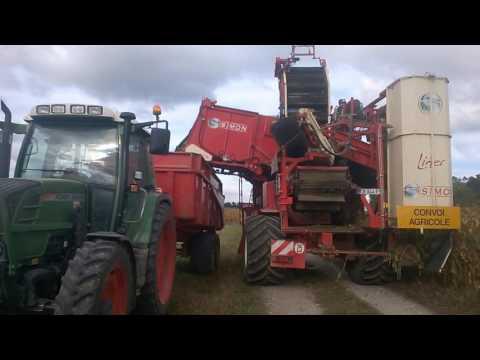 Vidéo lancement navet salé d'Alsace