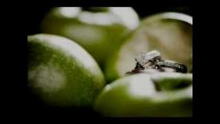 Chantal Kreviazuk - Green Apples [Lyrics]