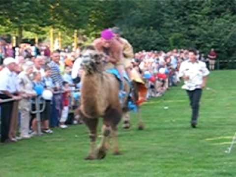 Kamelenrace Parkfeest Mill 2009 (2)