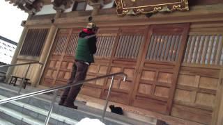 【福井】あの料理番の故郷にネコ寺!?