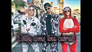 ESTOY COMO UNA CABRA!!!! | Tu no metes cabra remix (parodia)