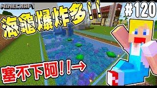 【Minecraft】蘇皮生存系列 #120 超會生的海龜!!! 一轉眼泳池又塞不下了... 【當個創世神】