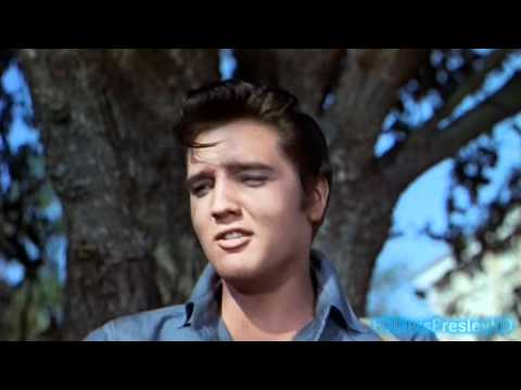 Elvis sings Gotta Lotta Living To Do (2K HD)