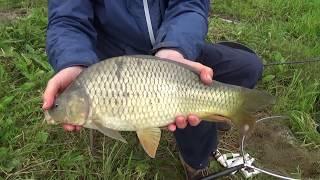 Рыбалка в савельево основной пруд места где нужно ловить