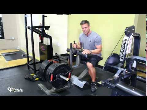 Seated Calf Raises ~ Fighter Workout 2