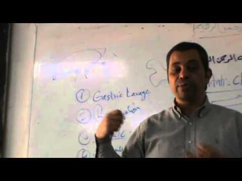 Dr.Ahmed Abdelrahman - ANS - Parasympatholytics
