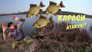 Клев рыбы в речице на днепре