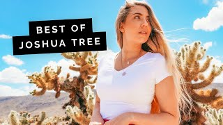 5 of the Best Things to Do in JOSHUA TREE | Little Grey Box