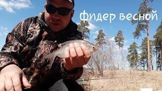 Отчет о рыбалке озеро исетское