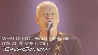 David Gilmour   What Do You Want From Me (Live At Pompeii)