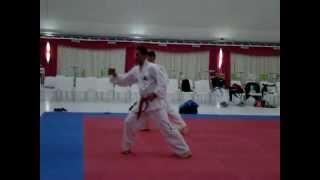 preview picture of video 'Do-San Tul Taekwondo ITF'