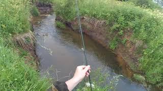 Рыбалка в ручьях и маленьких речках