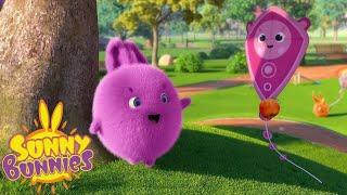 Bernard Bear | Cerfs-volants | Dessins Animés Pour Enfants | WildBrain