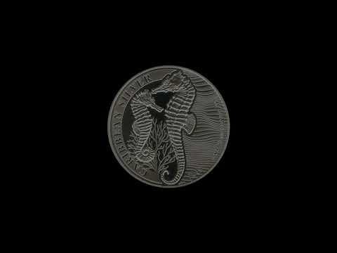 Video - Seepferdchen Silber Barbados - 2019