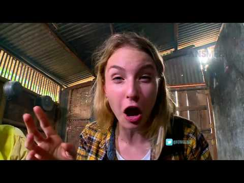 Video IKON KULINER NUSANTARA - Nasi Bogana Kuliner Khas Cirebon