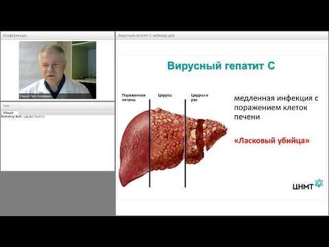 Регистр по вирусным гепатитам