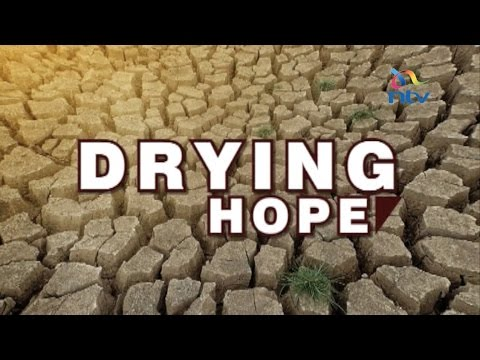 Drying Hope; hundreds on the verge of starvation as drought bites in Turkana