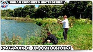 Платная рыбалка на карпа в осенках