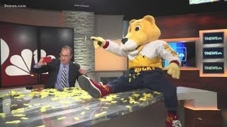 SuperMascot Rocky visits 9NEWS ahead of Nuggets home opener