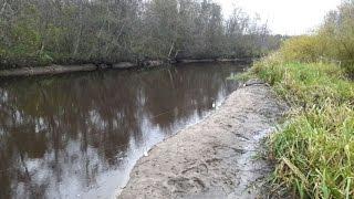 Ловля налима на малых реках осенью