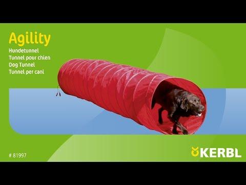 Agility Hundetunnel (#81997)