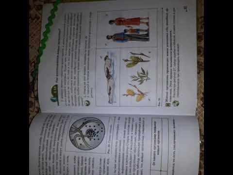 Выращиваю плесень на хлебе🍞! Опыт по биологии!😊
