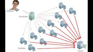 How a DDOS Attack works and How to stop it