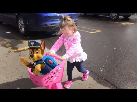 Cute Little Girl Toys R Us Shopping With Paw Patrol Chase | Mia Had a Little Dog Nursery Rhyme