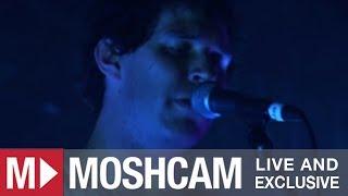 Animal Collective - Fireworks | Live in Sydney | Moshcam