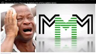 Has MMM Nigeria crashed for real? See shocking revelations