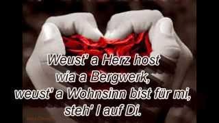 Weus'd a Herz host wia a Bergwerk - Rainhard Fendrich(lyrics)