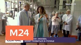 """Мороженое """"Москва"""" может появиться в столице - Москва 24"""