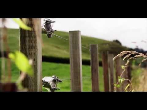 ¡Los Magníficos Paisajes De Nueva Zelanda!
