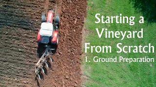 Starting a Vineyard from Scratch Part 1. Ground Preparation.