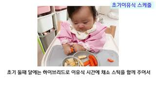 [ENG]초기 중기 이유식 스케줄 Baby Food Feeding Schedule | Baby food 1st and 2nd Stage