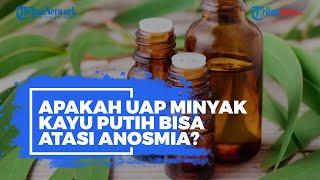 Apa Itu Terapi Uap dengan Minyak Kayu Putih? Benarkah Bisa Sembuhkan Anosmia Covid-19? Ini Kata Ahli