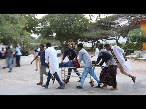 Suicide bomber kills 6 in mayor's office in Mogadishu